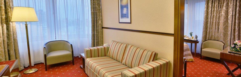 Junior Suite Single/Double Room